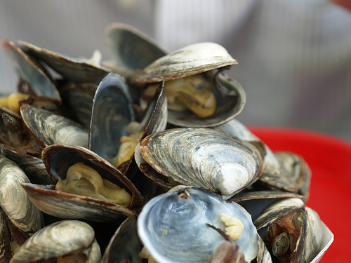 Realmussels