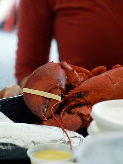 Lobsterarm